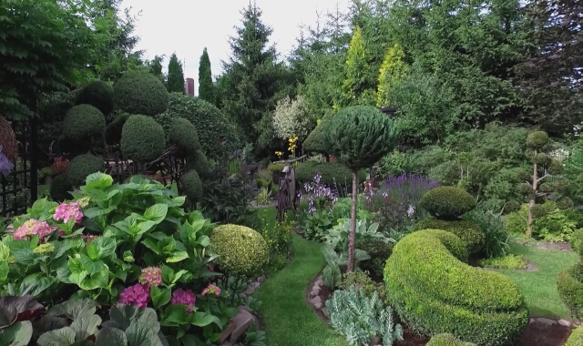 Ozdobne krzewy i dekoracje z naturalnych materiałów
